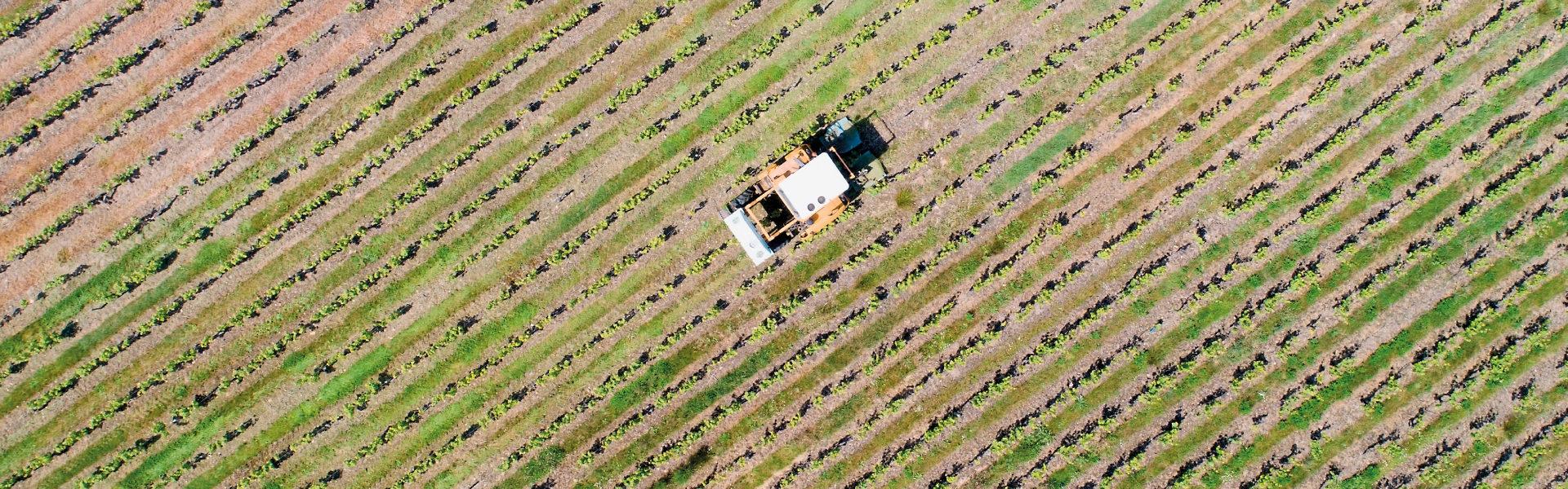 Zarpellon agricoltura Prodotti