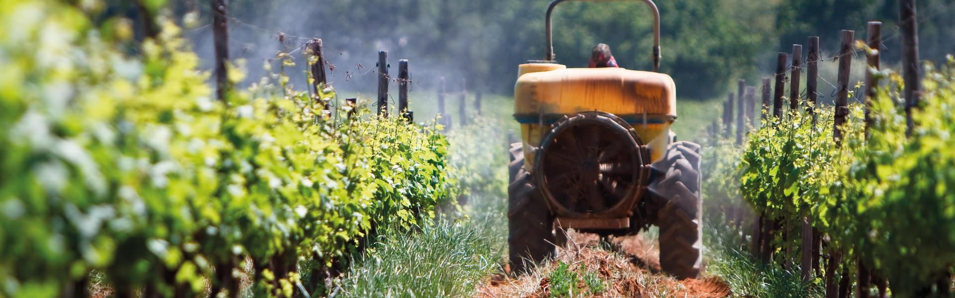Zarpellon agricoltura-Testata-Servizi_Patentino-trattori